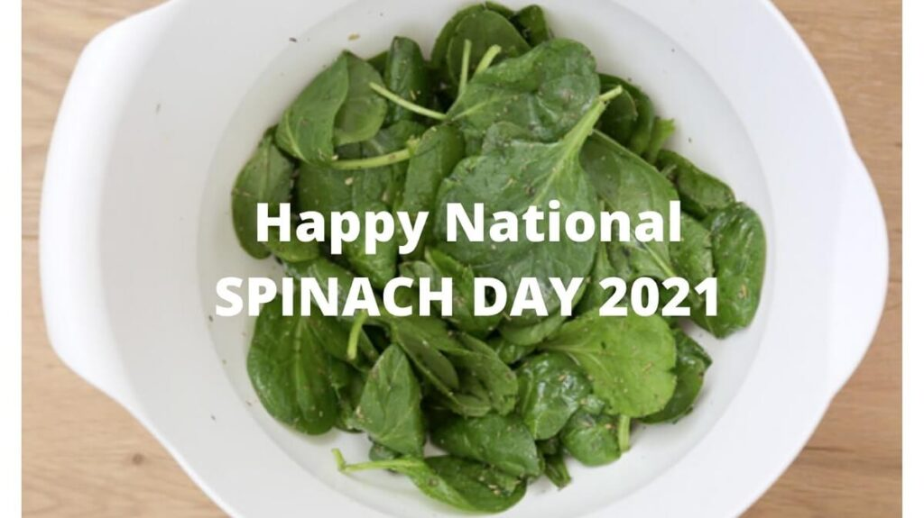 Happy National Spinach Day 2021 recipes