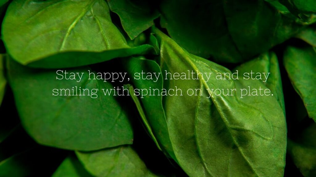 Happy-National Spinach Day 2021 Images