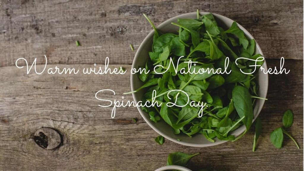 happy National Spinach Day 2021 Wishes